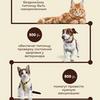 Створення інфографіки