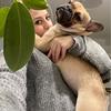 Передержка собак малых и средних пород