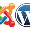 Консультация- обучение WordPress Joomla DLE OpenCart