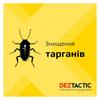 DEZ Tactic: Профессиональное уничтожение насекомых