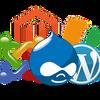 Техподдержка, доработка, восстановление сайтов