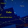 Предлагаю услуги астролога